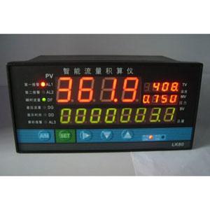 <b>流量积算控制仪</b>